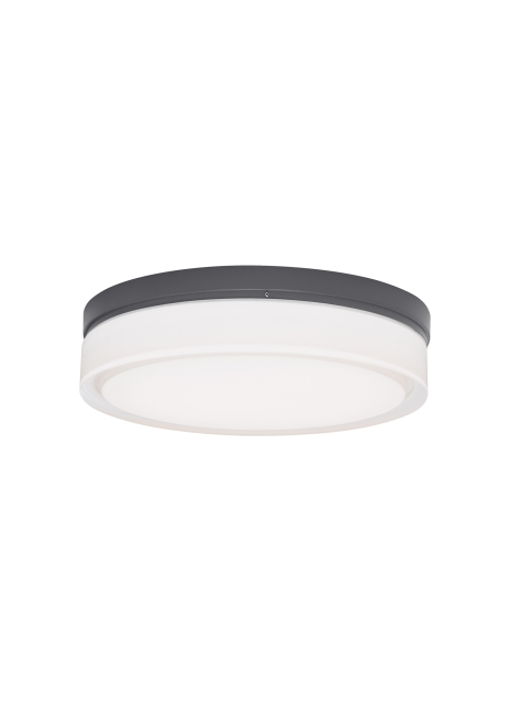 Cirque Small Outdoor Wall/Flush Mount